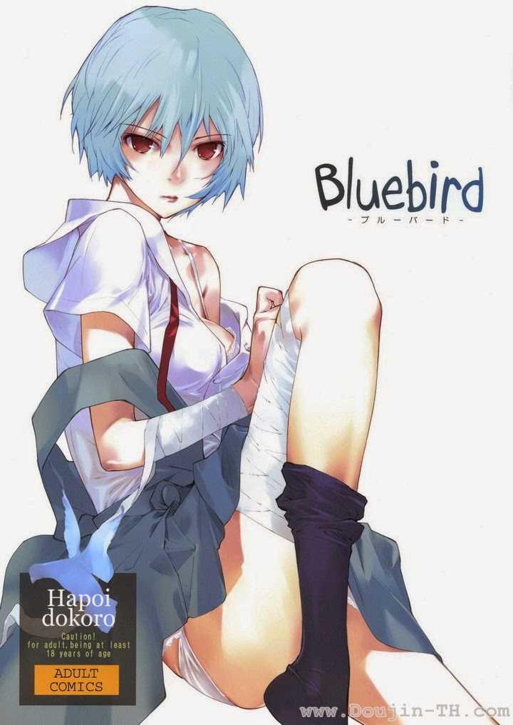 c77-hapoi-dokoro-okazaki-takeshi-bluebird-neon-genesis-evangelion