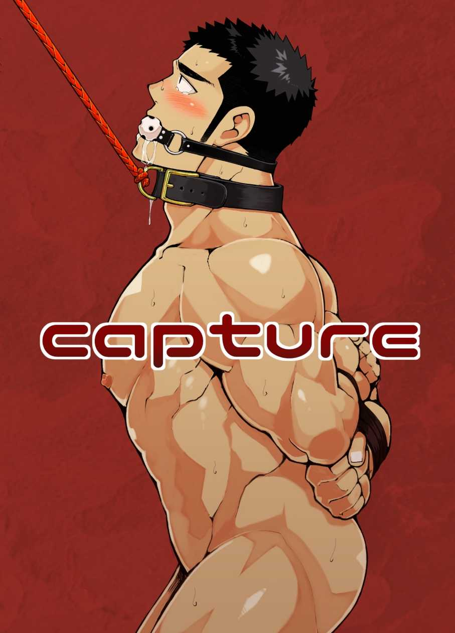 naop-capture-anything